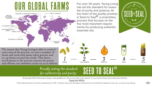 2a-Seed-to-Seal